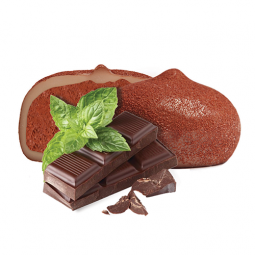 Ciocolata si menta